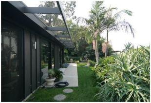 Pálmafás kert