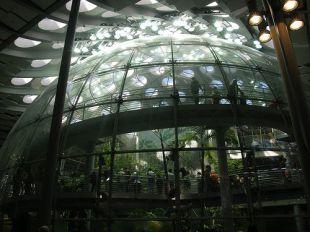 Oázis a buborékban
