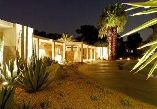 Kaktuszok és pálmafák