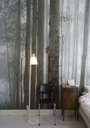 Téli erdős fotótapéta